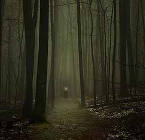 Wherever he leads you, following Jesus is always a path to a scary place.  Why would you want to follow a God so dangerous as this? Indeed, why  wouldn't you?