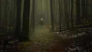 Scary-path-300-web-FI