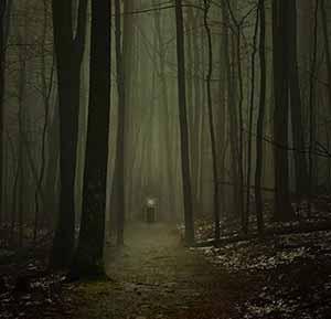 Scary-path-300-web