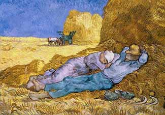 harvest-rest-325-web-FI2